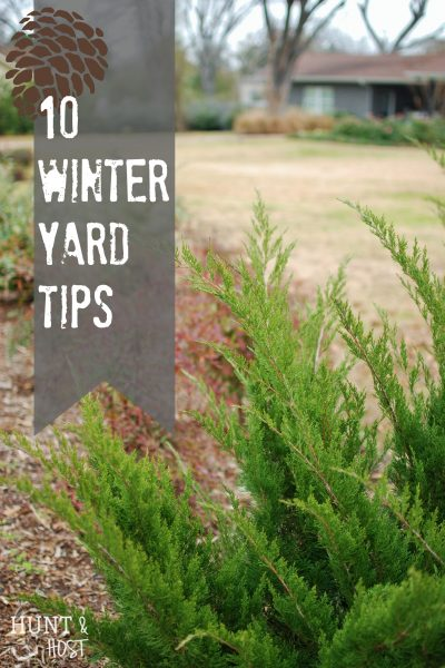 10 winter yard tips