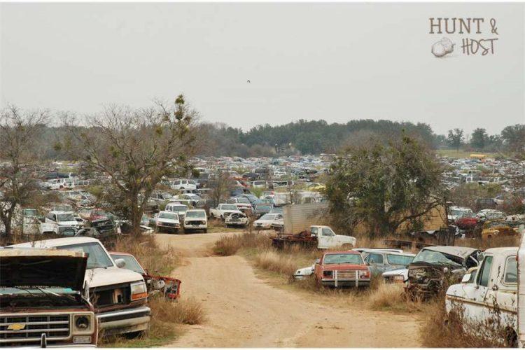 junk yard hunt and host