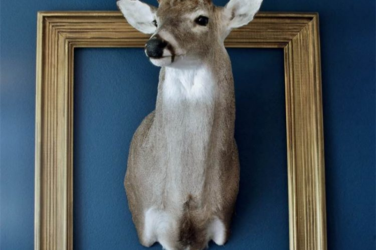French country deer decor