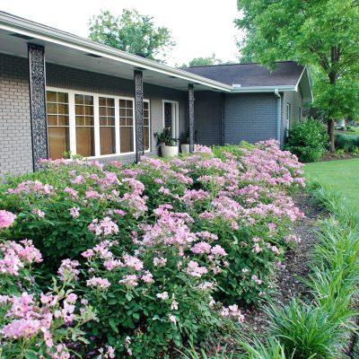 Hunt & Host Home Tour: Curb Appeal Transformation