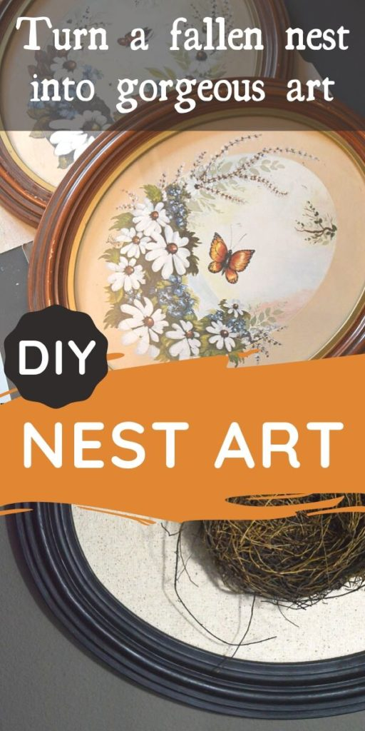Turn a fallen bird nest into DIY art. This nature art project is a gorgeous craft you can make for your budget home decor with thrifted and found finds from nature. Display a fallen bird's nest in your home decor with style, it's easy! #nestdecor #springdecor #natureart #frameupcycle