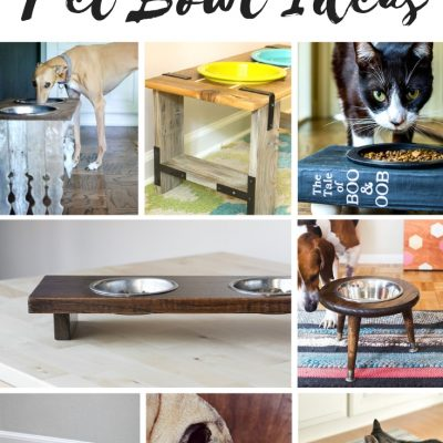 Cute Pet Bowl Ideas