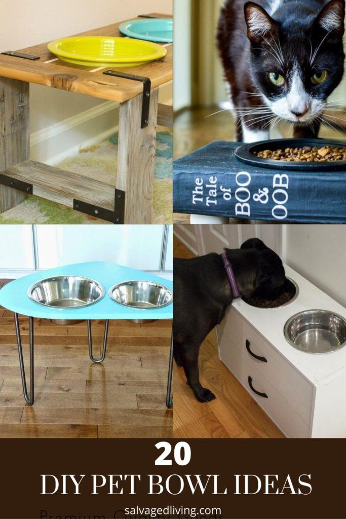 diy pet bowl ideas