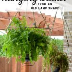 Looking for an unusual outdoor hanging basket for your favorite patio plants? This vintage lampshade makes the perfect hanging basket and is a simple upcycle for your porch. #outdoorhangingbasket #porchideas #plantlady #DIYpatiodecor #lampshademakeover #vintagelampshade #diylampshadeideas