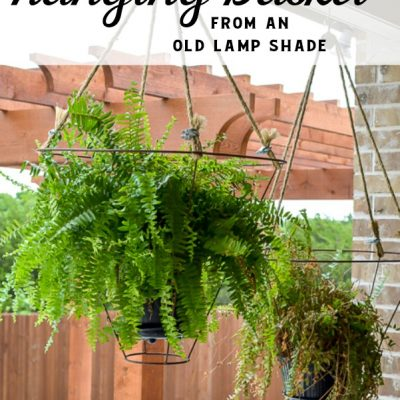 Unusual Outdoor Hanging Basket Idea
