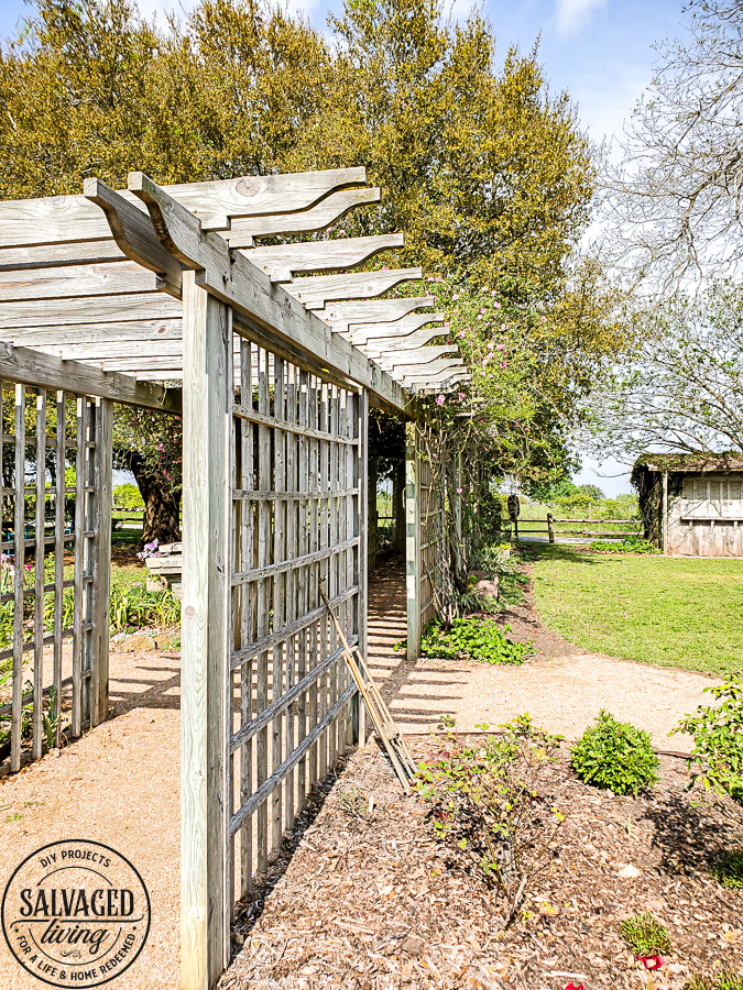 Take tour through the Antique Rose Emporium in Brenham, Texas and see the lovely gardens, wedding venue and inspirational views right here! #antiquerose #botaicalgarden #texasroadtrip #roundtop #roadtrip #daytrip #rosegarden