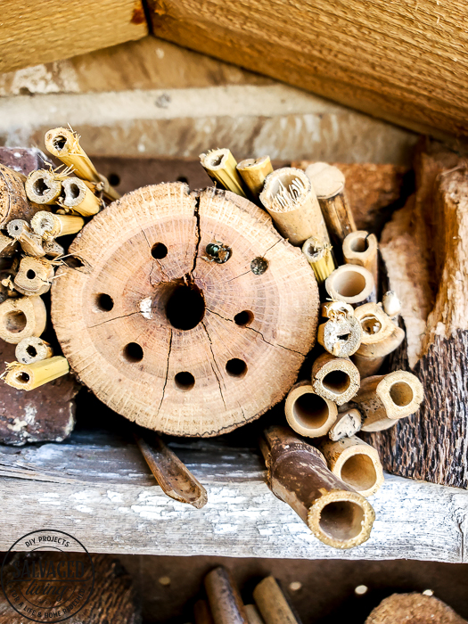 How to build a DIY bug house from scrap wood, perfect for a summer project with kids. Invite good bugs into your garden with this bug hotel, you will soon find solitary bees and insects taking up residence in your yard. #bughouse #savethebees #goodbugs #scrapwood #buildlikeagirl #gardenart #gardenproject #naturalgardencare
