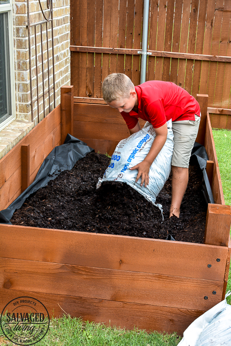 Learn how to spray stain on wood along with tips on how to clean your srpayer when you spray an oil based stain. HINT: it is so much easier than you think! This DIY raised garden bed got a spray stain that will help the wood look good and last longer and it only took minutes to do,. #wagnerspraytech #spraystain #oilbasedstain #paintcleanup #sprayertips #stainedwood #flowergarden #vegetablegarden #raisedbed #landscapedecor #fencestain #diyfencestain