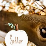 DIY dry erase pumpkins for a fall tablescape, perfect for a large Thanksgiving get together. Use these dry erase name plates over and over for neutral fall decor. #dryeraseboardideas #DIYdryerase #dryerasedecorate #falltablescape