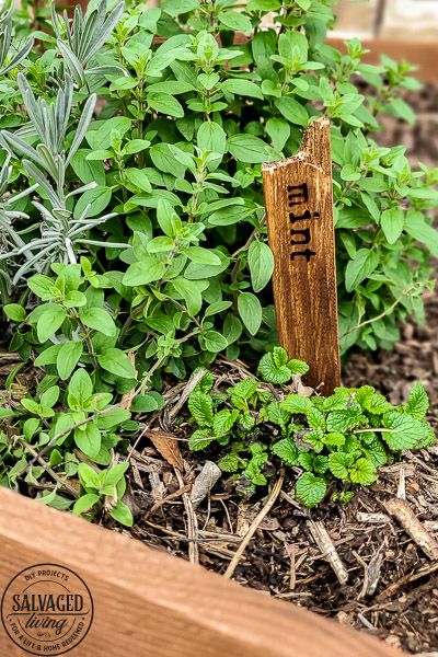 how to make diy herb garden markers for your garden with simple supplies for garden markers that will last inside or out. They make cute farmhouse decor for your indoor potted plants as well. #gardencraft #gardenstake #raisedgardenidea