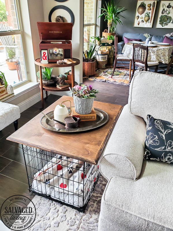 Learn how to build a tabletop for your dog crate or kennel and make an eyesore of a pet product into pretty pet furniture! #stylishpetdecor #petideas #dogcrate #dogkennelfurniture