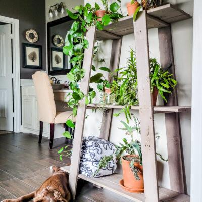 Thrifted Shelf For Decor